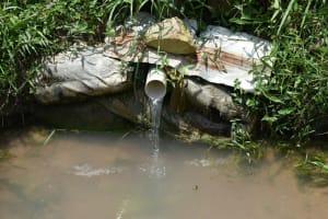 The Water Project: Shamoni Community, Shiundu Spring -  Improvised Discharge Pipe