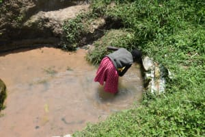 The Water Project: Shamoni Community, Shiundu Spring -  Washing Her Container Before Fetching