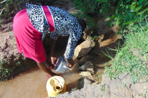 The Water Project: Indulusia Community, Osanya Spring -  Rinsing Out Her Teapot Before Fetching