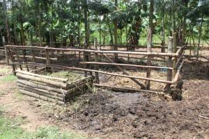 The Water Project: Mayuge Community, Ucheka Spring -  Animal Pen