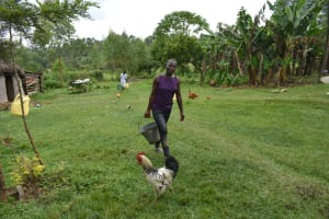 The Water Project: Makale Community, Kwalukhayiro Spring -  Carrying Water