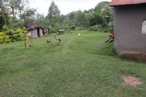 The Water Project: Makale Community, Kwalukhayiro Spring -  Home Compound