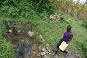 The Water Project: Makale Community, Kwalukhayiro Spring -  At The Spring