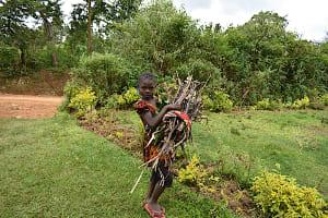 The Water Project: Makale Community, Kwalukhayiro Spring -  Carrying Firewood