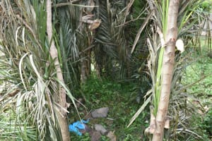 The Water Project: Wepika Community, Musa Mmasi Shikwe Spring -  Bathing Shelter Interior