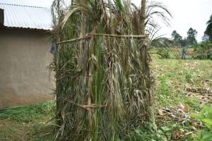 The Water Project: Wepika Community, Musa Mmasi Shikwe Spring -  Bathing Shelter