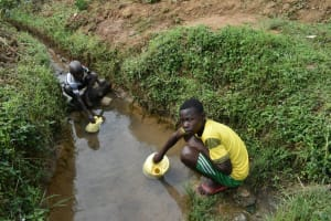 The Water Project: Wepika Community, Musa Mmasi Shikwe Spring -  Collecting Water