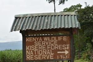 The Water Project: Wepika Community, Musa Mmasi Shikwe Spring -  Landmark For The Community