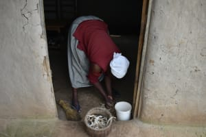 The Water Project: Wepika Community, Musa Mmasi Shikwe Spring -  Shelling Maize By Hand