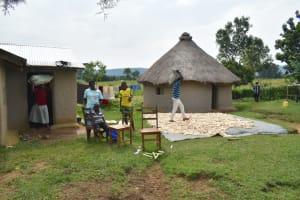 The Water Project: Wepika Community, Musa Mmasi Shikwe Spring -  Spreading Maize To Sundry
