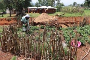 The Water Project: Mukhonje B Community, Peter Yakhama Spring -  Josephine Picking Vegetables