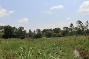 The Water Project: Mukhonje B Community, Peter Yakhama Spring -  Landscape