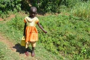 The Water Project: Lunyinya Community, Makunga Spring -  Carrying Water Home