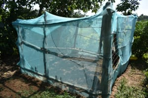 The Water Project: Lunyinya Community, Makunga Spring -  Chicken House
