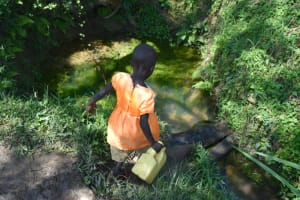 The Water Project: Lunyinya Community, Makunga Spring -  Heading To Fetch Water