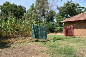 The Water Project: Lunyinya Community, Makunga Spring -  Clothesline