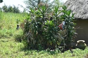 The Water Project: Makunga Community, Tabarachi Spring -  Bathing Shelter