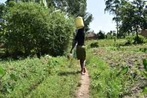 The Water Project: Makunga Community, Tabarachi Spring -  Carrying Water Home