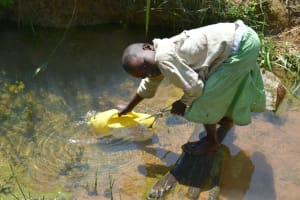 The Water Project: Makunga Community, Tabarachi Spring -  Collecting Water