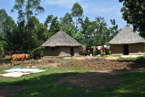 The Water Project: Makunga Community, Tabarachi Spring -  Home Compound