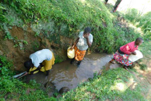 The Water Project: Ikoli Community, Odongo Spring -  Collecting Water From Odongo Spring
