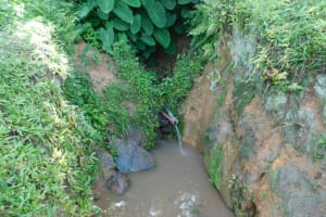 The Water Project: Ikoli Community, Odongo Spring -  Current Situation Of Odongo Spring