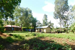 The Water Project: Ikoli Community, Odongo Spring -  Home Compound