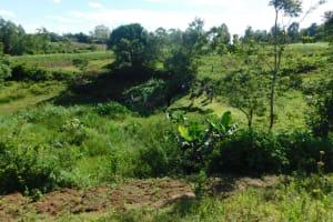The Water Project: Ikoli Community, Odongo Spring -  Landscape Around Odongo Spring