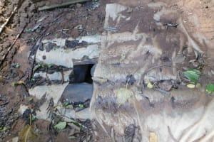 The Water Project: Ikoli Community, Odongo Spring -  Mud Wood And Plastic Latrine Floor