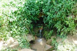 The Water Project: Mushikulu B Community, Olando Spring -  Current Situation Of Olando Spring