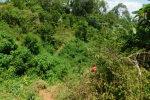 The Water Project: Mushikulu B Community, Olando Spring -  Landscape Around Olando Spring