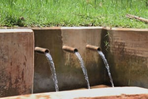 The Water Project: Irumbi Community, Shatsala Spring -  Clean Water Flows From Shatsala Spring
