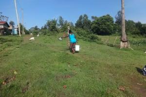 The Water Project: Isanjiro Community, Musambai Spring -  Carrying Water