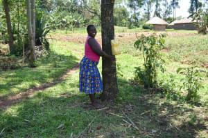 The Water Project: Shianda Commnity, Mukeya Spring -  Handwashing