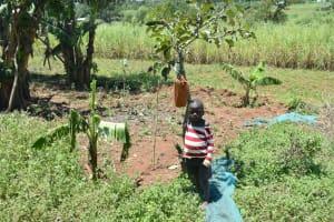 The Water Project: Shianda Commnity, Mukeya Spring -  Handwashing Station