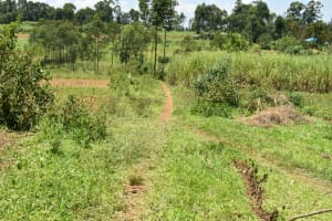 The Water Project: Shianda Commnity, Mukeya Spring -  Path To The Spring