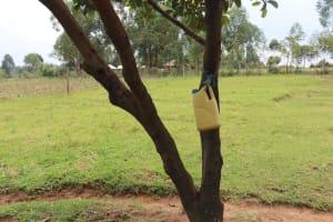 The Water Project: Shamoni Community, Laban Ang'ata Spring -  Handwashing Container
