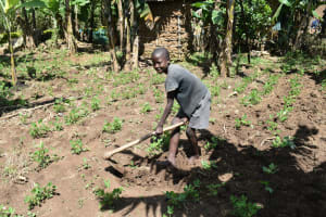 The Water Project: Malekha West Community, Soita Spring -  Weeding