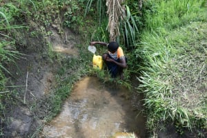 The Water Project: Malekha Central Community, Misiko Spring -  Collecting Water