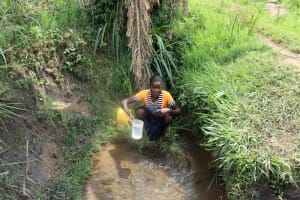 The Water Project: Malekha Central Community, Misiko Spring -  Esther Collecting Water