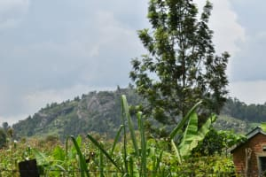 The Water Project: Malekha Central Community, Misiko Spring -  Landscape