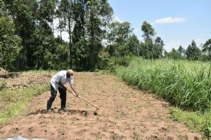 The Water Project: Shamoni Community, Shatuma Spring -  Farming