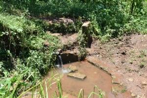 The Water Project: Shamoni Community, Shatuma Spring -  Water Point