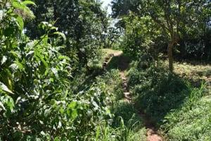 The Water Project: Shamoni Community, Shatuma Spring -  Community Landscape
