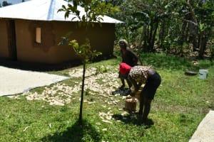 The Water Project: Shamoni Community, Shatuma Spring -  Drying Maize