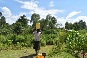 The Water Project: Shianda Community, Akhonya Spring -  Carrying Water