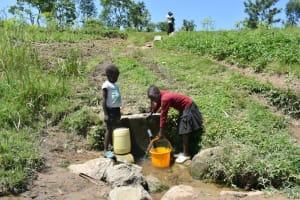 The Water Project: Shianda Community, Akhonya Spring -  Collecting Water