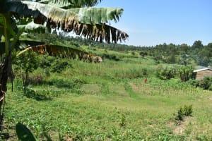 The Water Project: Shianda Community, Akhonya Spring -  Community Landscape