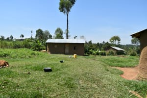 The Water Project: Shianda Community, Akhonya Spring -  Compound