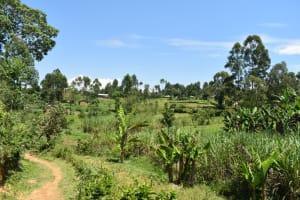 The Water Project: Shianda Community, Akhonya Spring -  Landscape